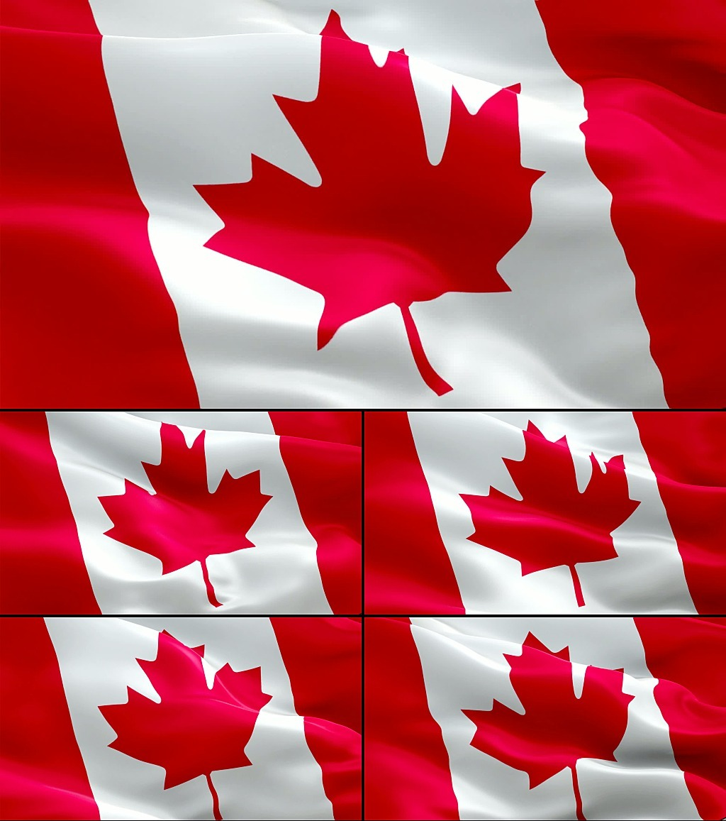 飘扬的加拿大国旗