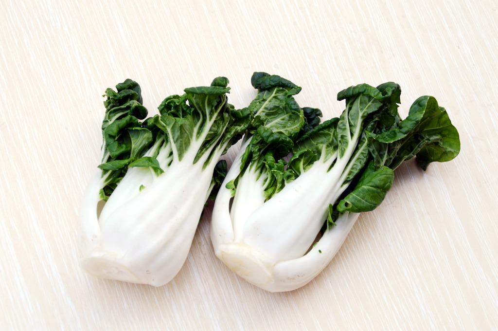 近拍小白菜图图片