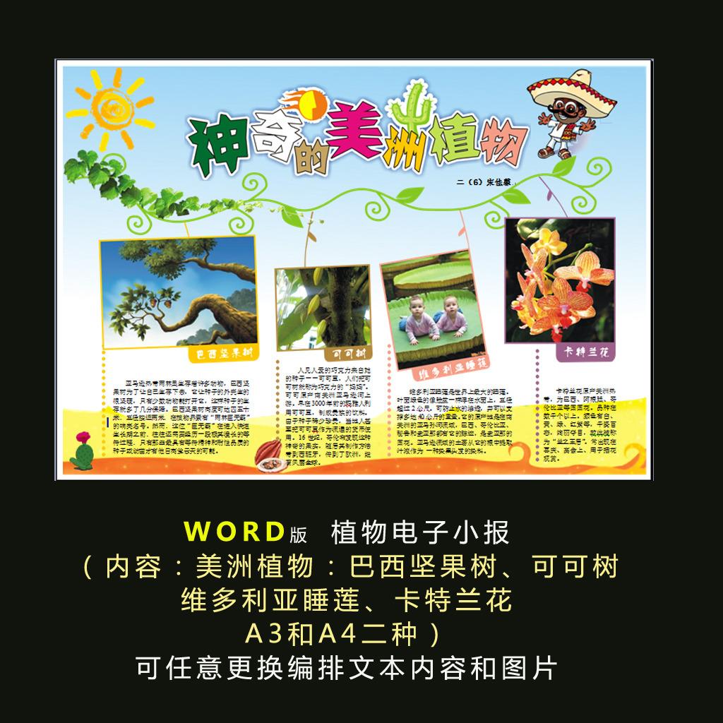 word电子小报植物小报模板美洲植物