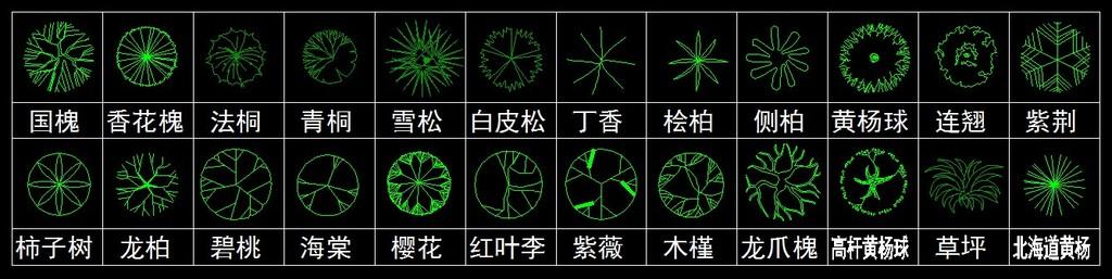 cad平面图例花卉苗木
