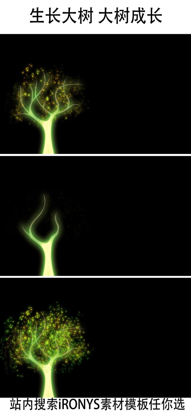 大树生长动画视频