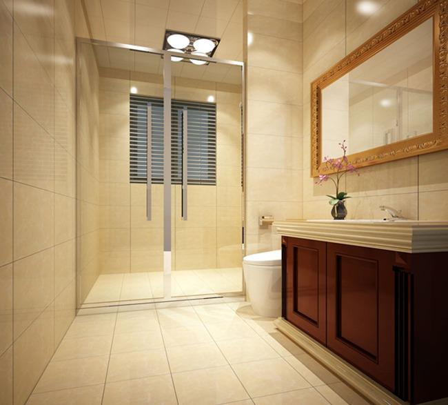 简欧设计 简欧装修 卫生间装修 浴室设计 浴室空间 浴室模型 浴室效果图片