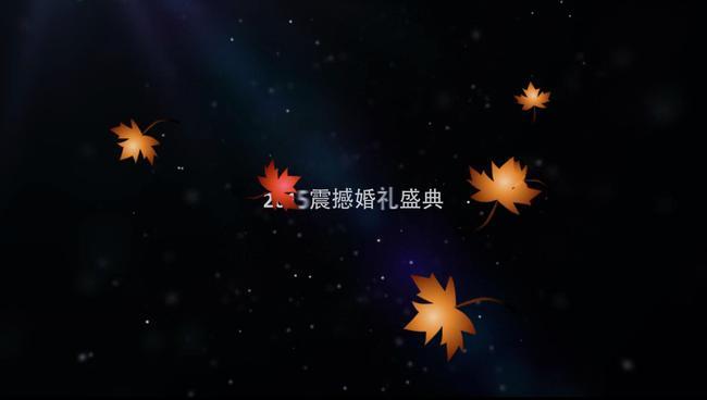 枫叶星空画步骤