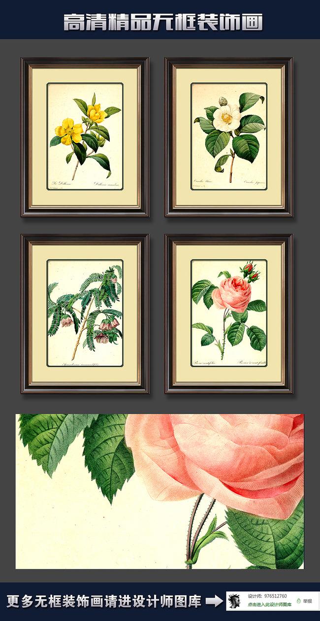 高清欧美手绘花卉花朵