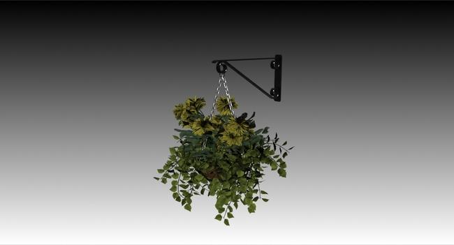 盆栽植物单体手绘吊