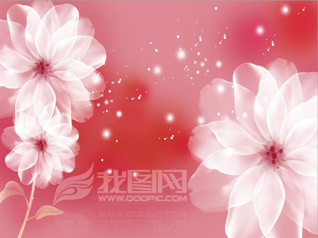背景墙|装饰画 电视背景墙 手绘电视背景墙 > 透明牡丹花卉婚礼