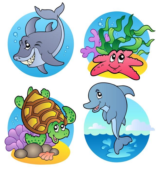 海洋动物图片卡通海里鱼类海龟鲨鱼海豚海星