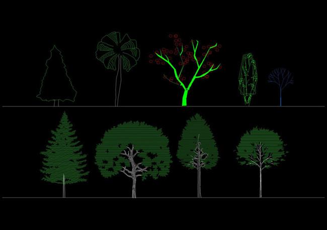 植物cad立面图