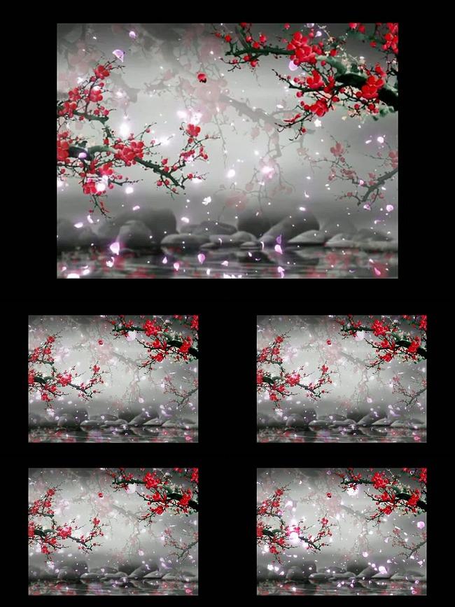 中国风水墨桃花梅花樱花花瓣飘落视频