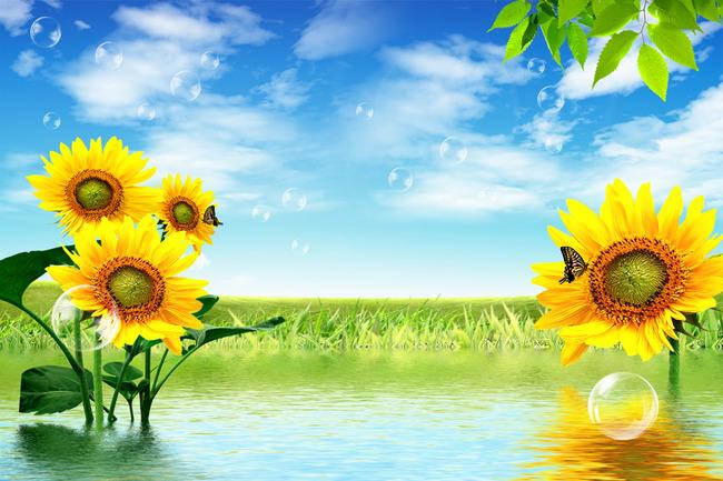 电视背景墙 手绘电视背景墙 > 3d向日葵水花倒影蓝天白云