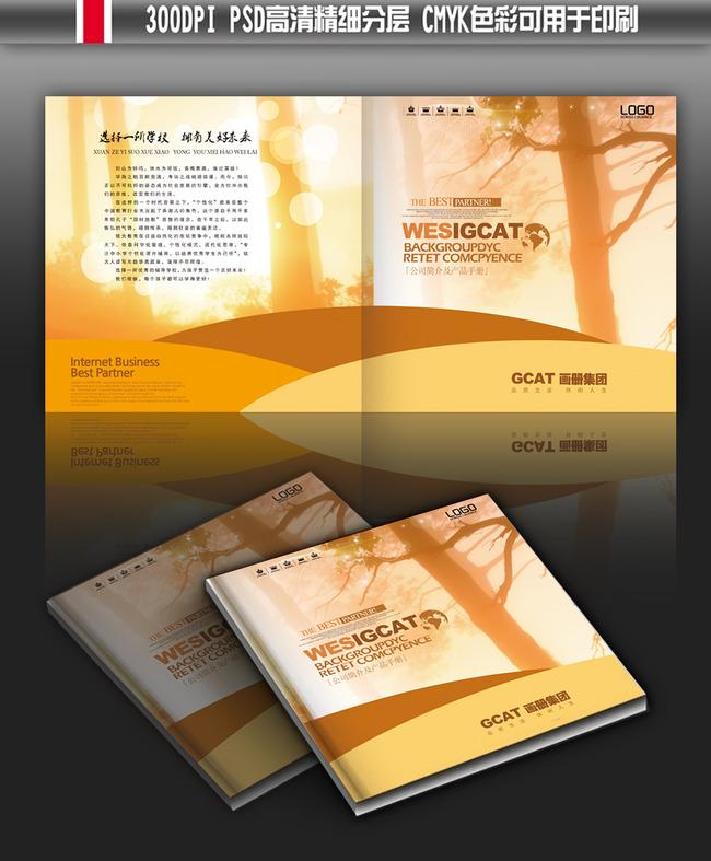 平面设计 画册设计 其它画册设计 > 学校教育宣传册画册封面  下一张&图片