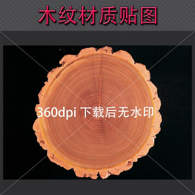 优质树木年轮木纹材质贴图横断剖面图