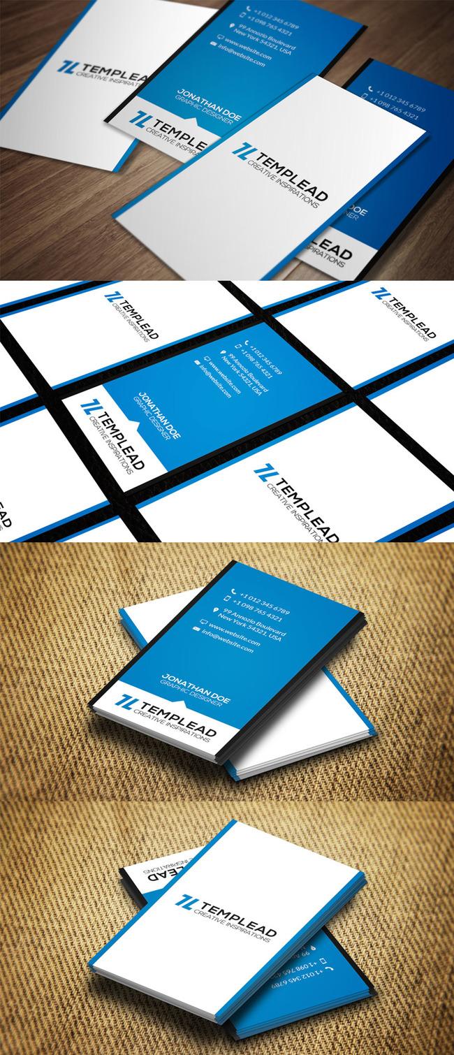 欧式天蓝竖版商务名片模板