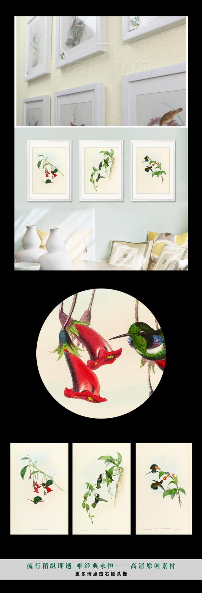 手绘简欧风格复古小清新植物花鸟装饰画