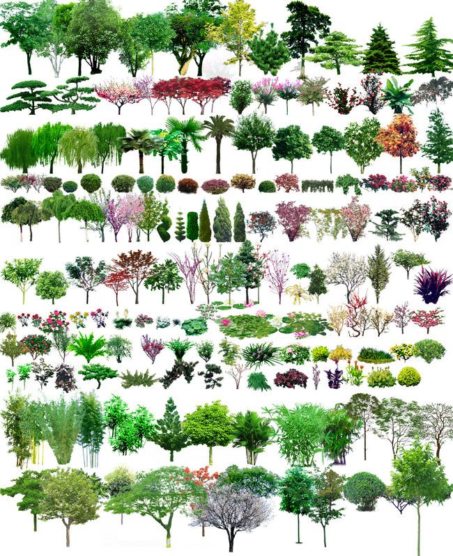 园林景观花草树林透视鸟瞰效果图psd源文件