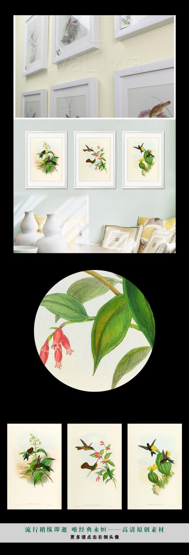 背景墙|装饰画 无框画 动物图案无框画 > 手绘简约复古小清新植物花鸟