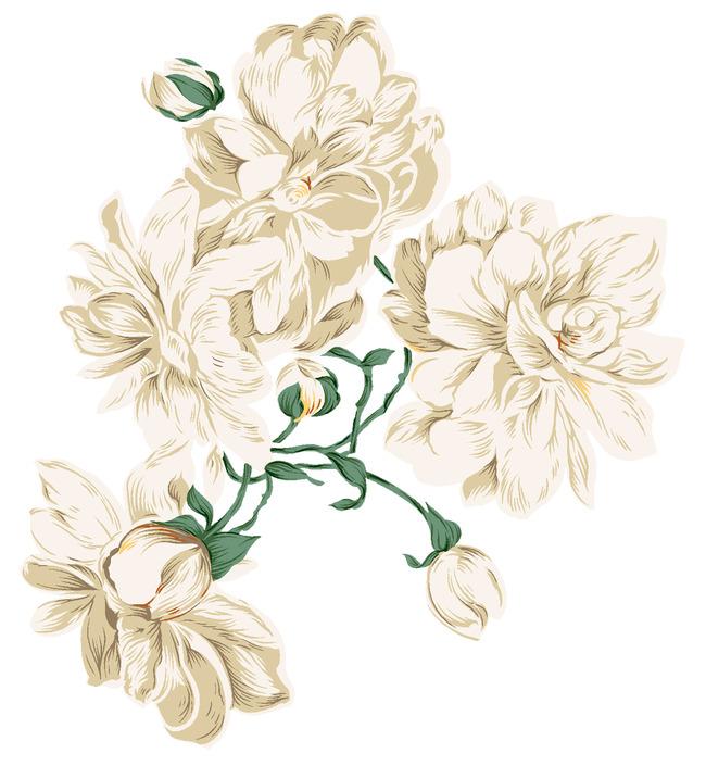 韩国漂亮的手绘风格牡丹花素材