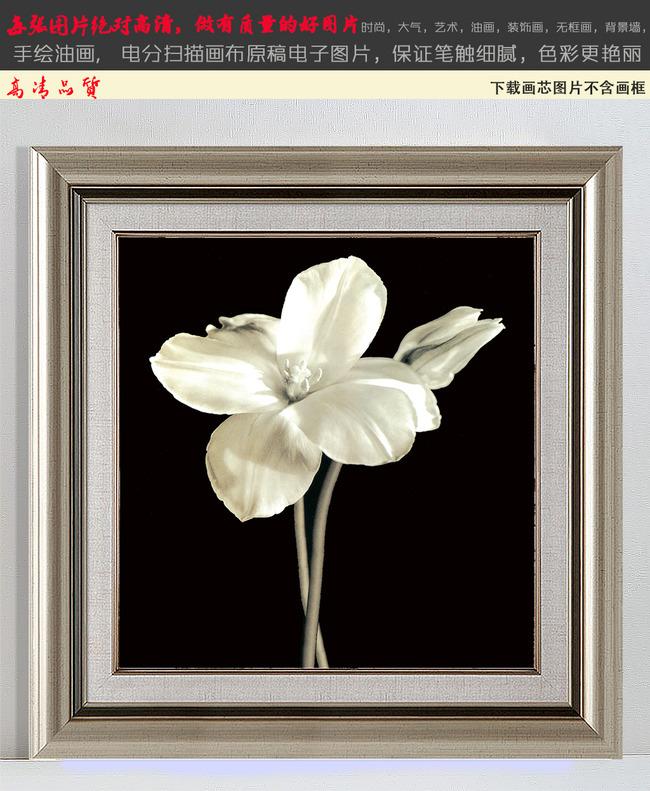 欧式黑白罂粟花装饰画