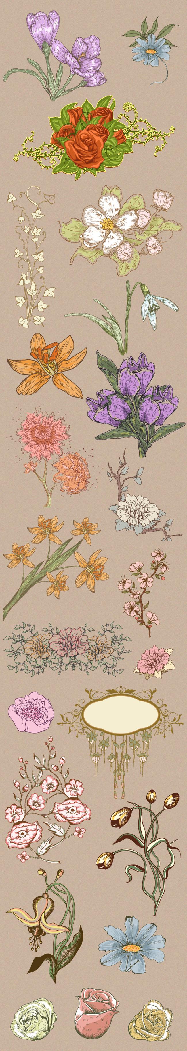 手绘韩式花卉图案素材