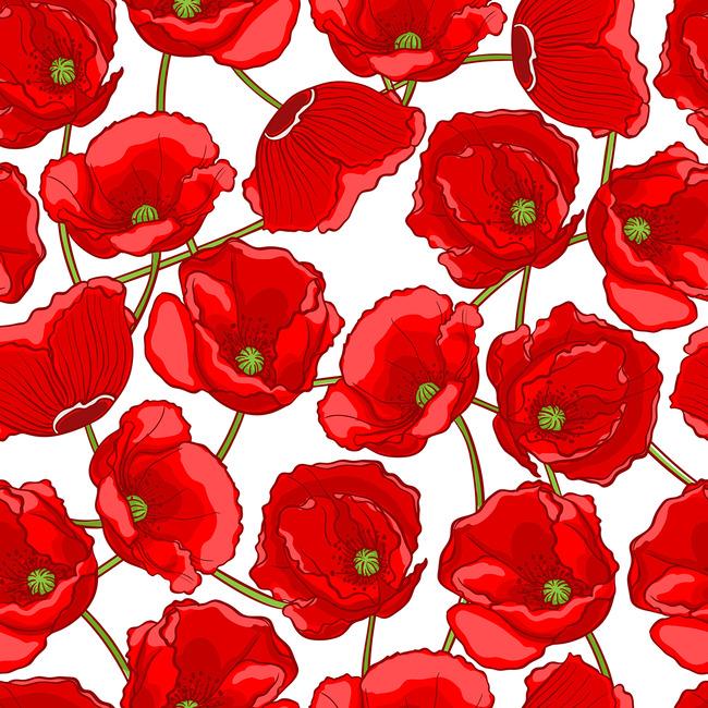插画背景 韩国花卉