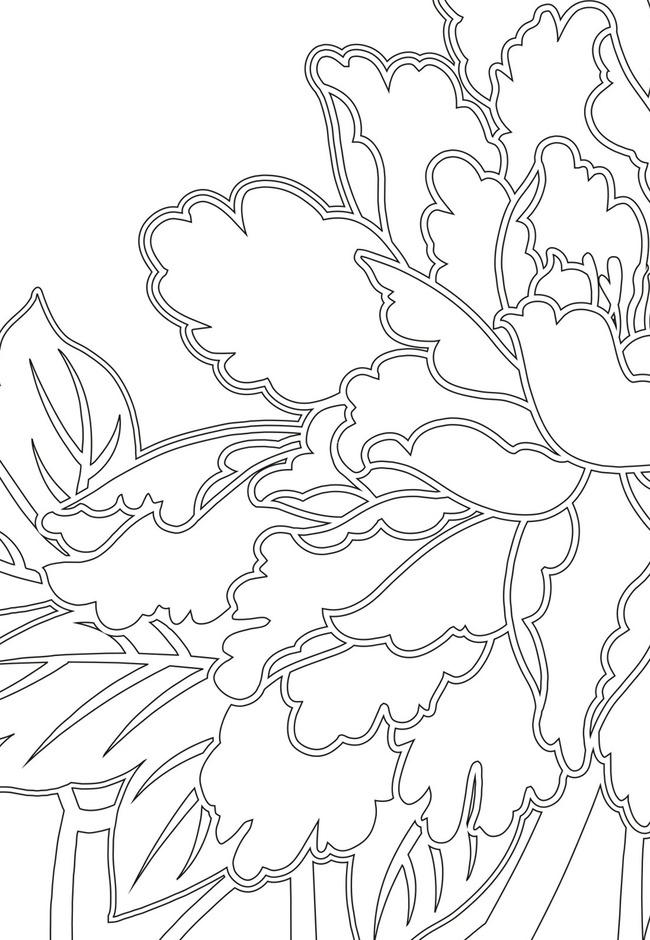 手绘线条画牡丹