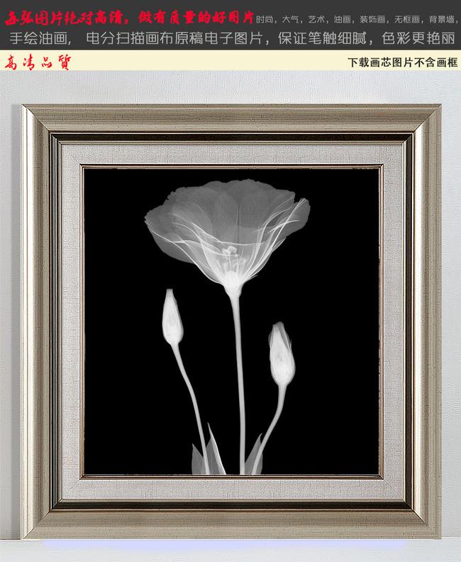 梦幻花卉植物怀旧黑白装饰画无框画1