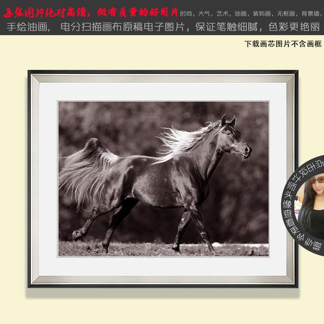 田野 牧马 唯美 老照片 黑白画 怀旧风景 手绘 美式田园 地中海 摄影