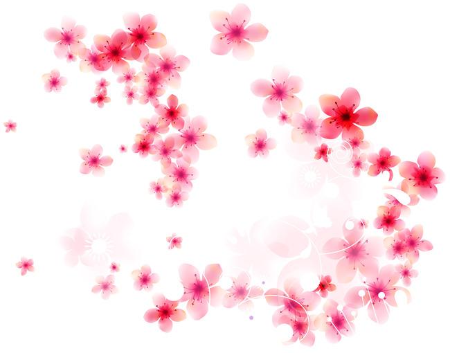 手绘 插画背景 韩国花卉