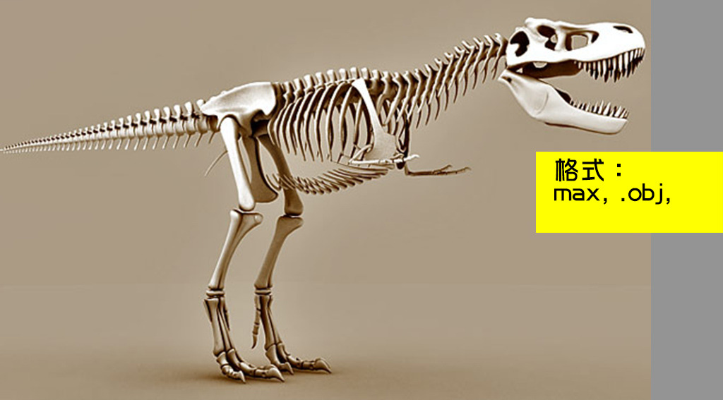 3d恐龙骨架