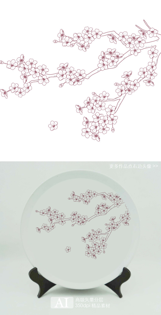 素描 花朵 铅笔画 玫瑰展示