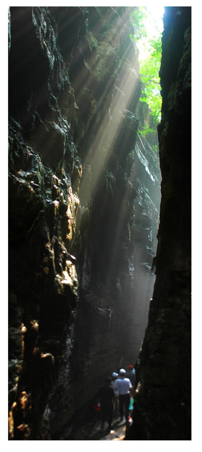 裂谷奇观地震大裂谷大自然山水风景图片