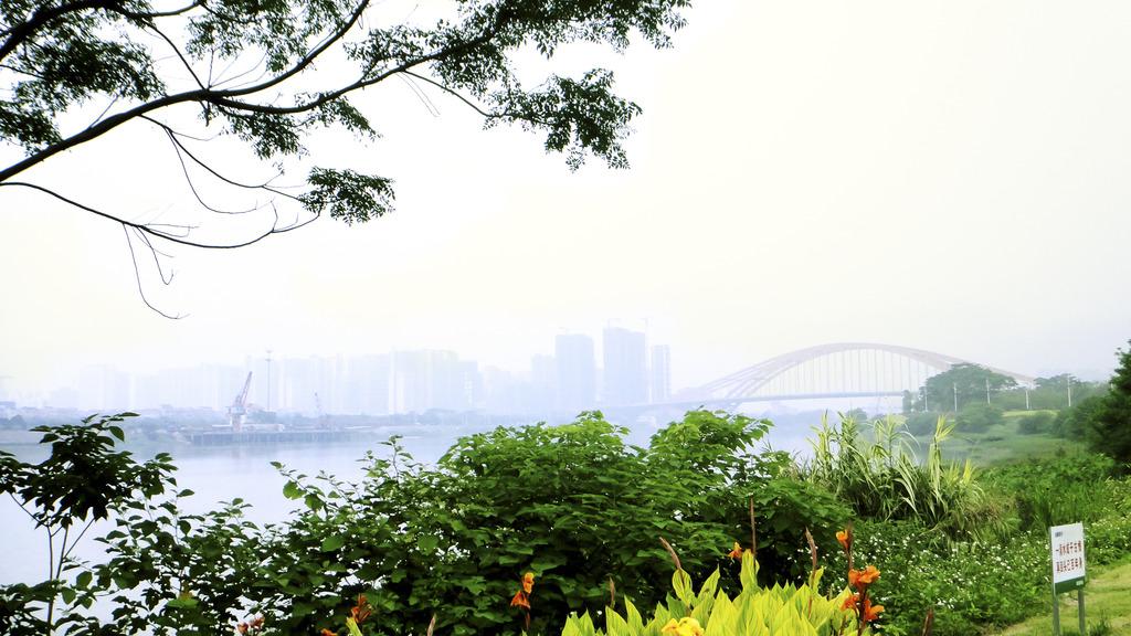 植物景观河边字