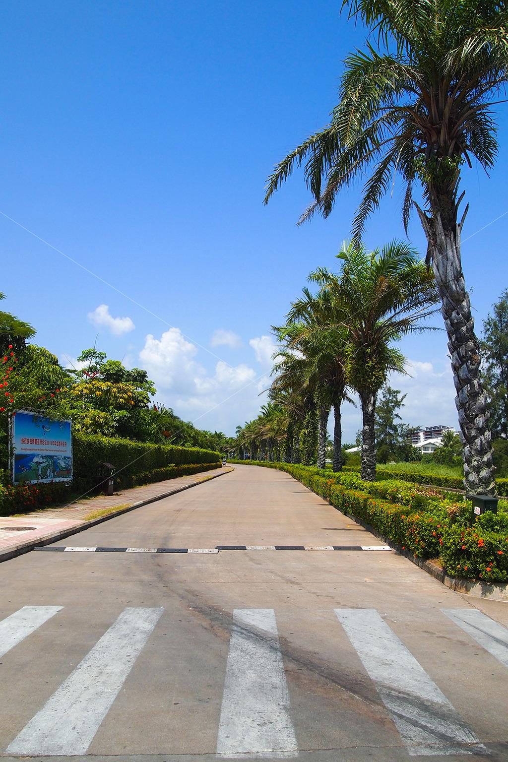 酒店海边木板道路