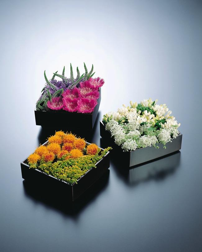 简约 装饰 鲜花 园艺 花 欣赏 盆景 花瓶 花盆 插花 艺术 插花类图片