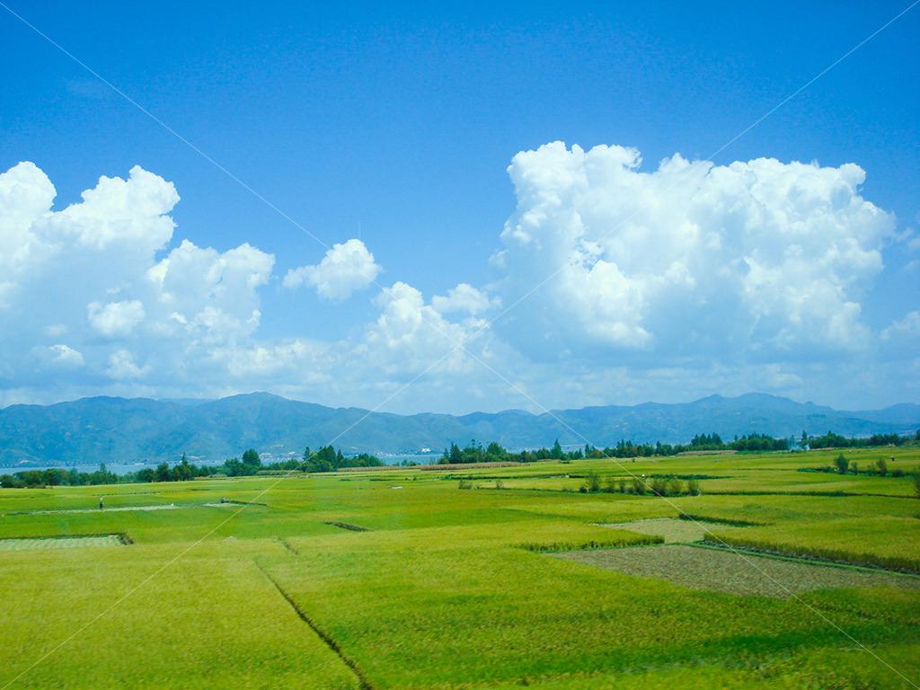 云南旅游风景模板下载(图片编号:13482667)