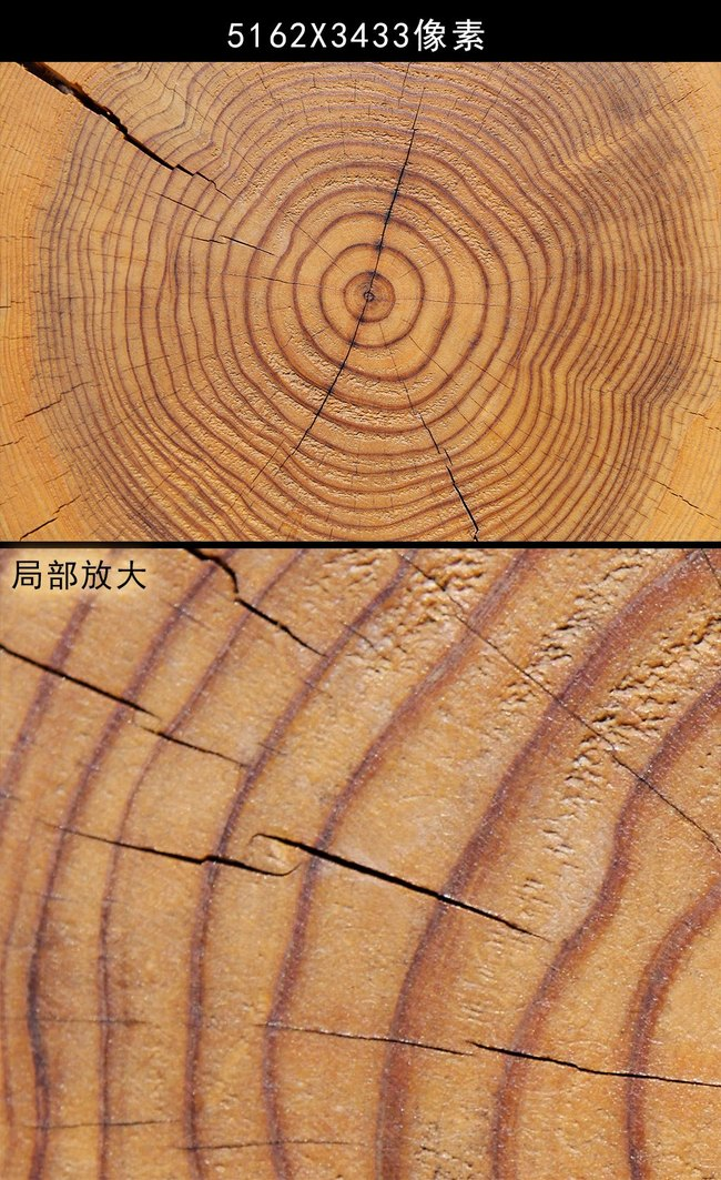 木材贴图 木纹贴图 > 树木年轮贴图木板素材纹理木纹