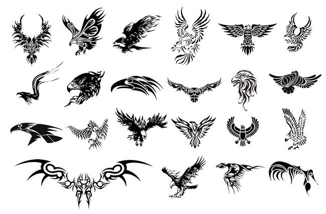 老鹰纹身图案模板下载(图片编号:13505949)