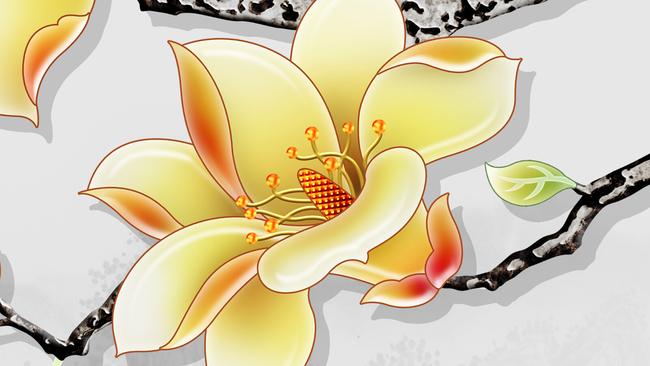 高清手绘玉兰花室雅兰香