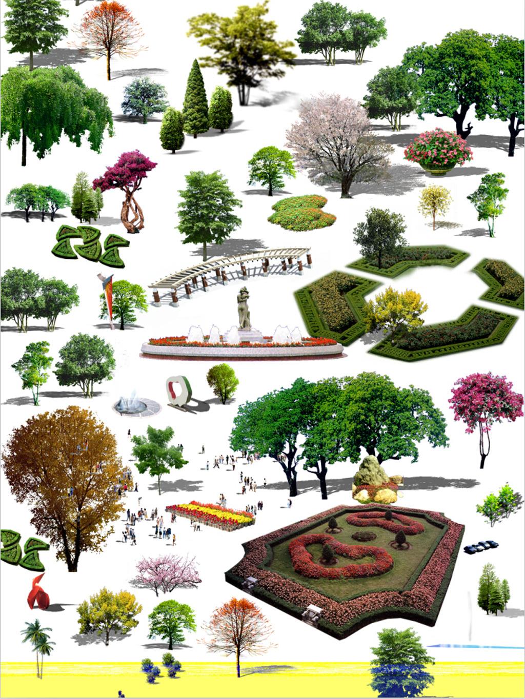 花坛植物平面图