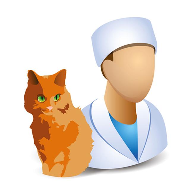 兽医职业卡通形象矢量图