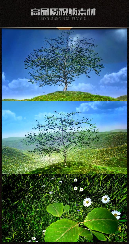 3d小树快速生长成大树草地草原蓝天