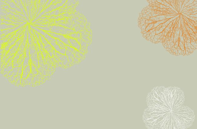 现代简约三色花卉背景墙壁画高清图片下载(图片编号).图片