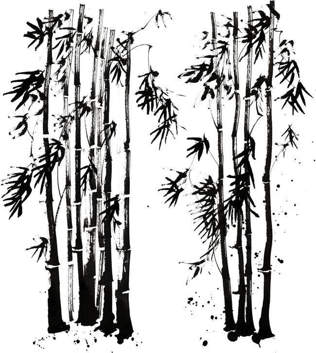 黑夜 插画 插画背景 手绘插画 电脑美术 绘画 森林 国画 漫画 场景