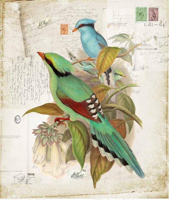 手绘彩色动物装饰画