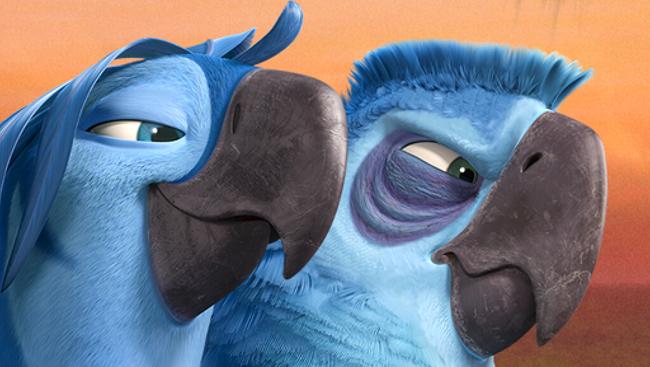 3d立体油画壁画立体画蓝色鹦鹉地画
