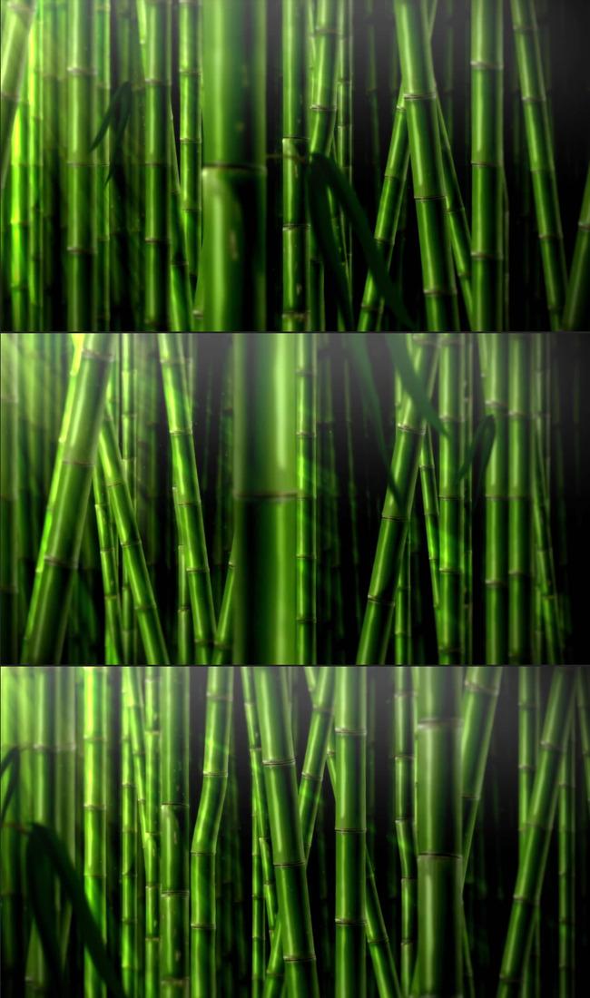 竹林深处简谱葫芦丝展示