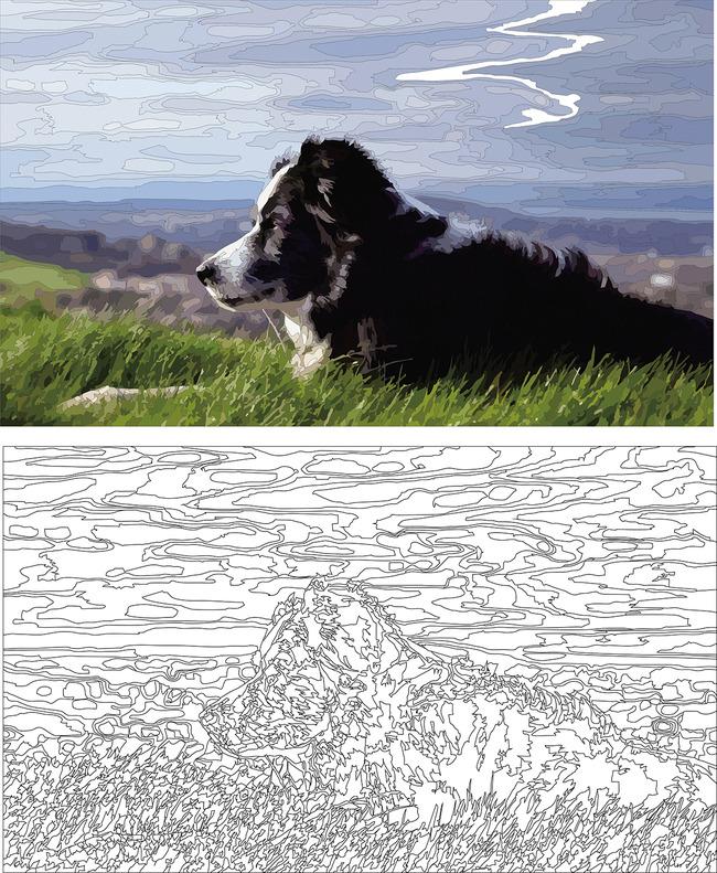 黑白填充画动物