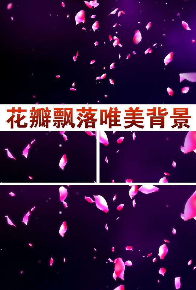视频素材 动态视频素材 动态|特效|背景视频素材 > 花瓣飘落视频  0 %图片