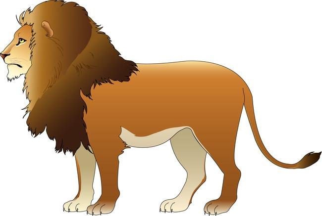 狮子简笔画 小动物