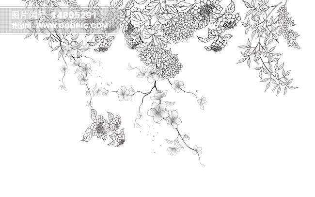 精美素描植物画
